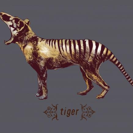 thylacine 2-01
